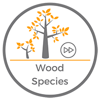 Wood Species Video